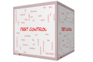 The 3 Most Surprising Secrets from Bug Control Companies
