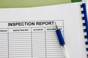 Why Do I Need a Termite Inspection Report?