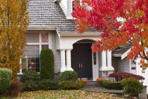 Pest Prevention Tips for the Fall in Georgia